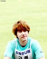 Kyu in Athletic Idols - cho-kyuhyun photo