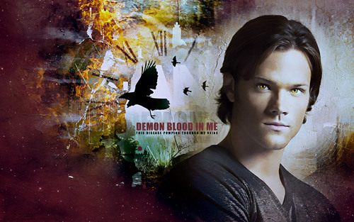 Sam Winchester wallpaper with a bouquet and a sign titled Sam ♥