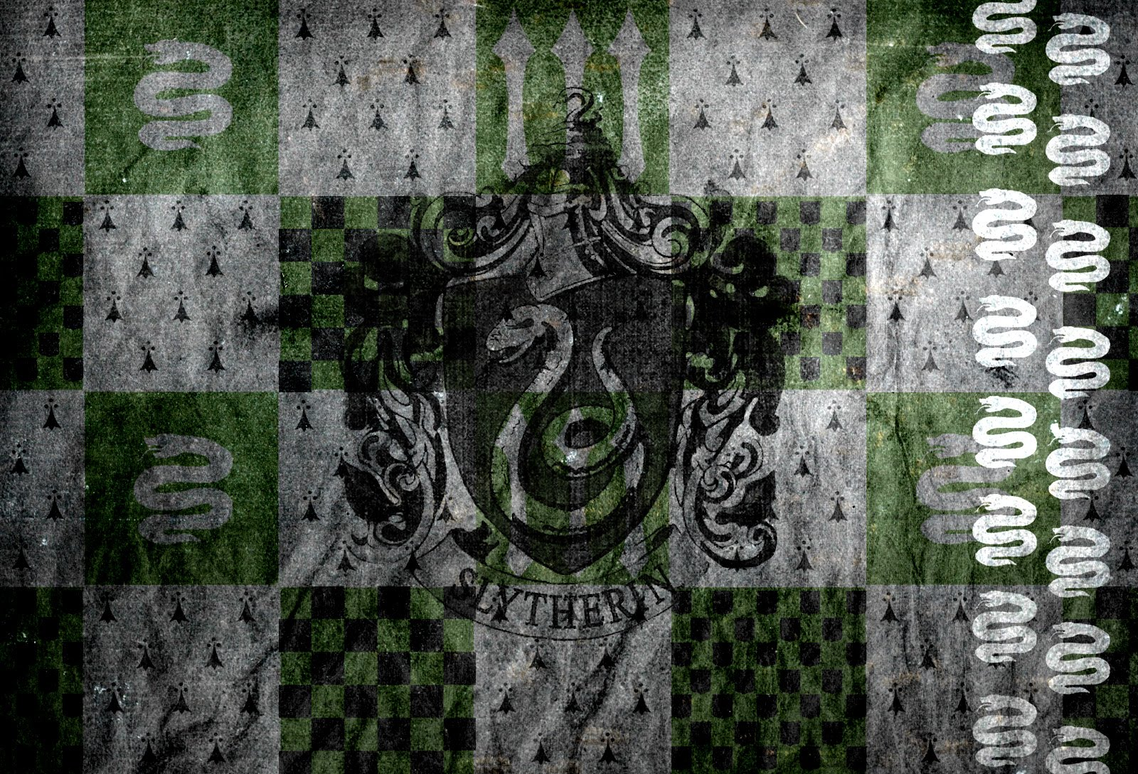 slytherin wall harry potter photo 25479280 fanpop