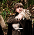 Summer and Bran Stark - game-of-thrones-direwolves photo