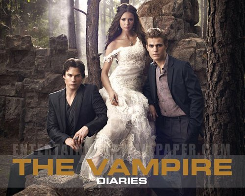 The Vampire Diaries پیپر وال with a bridesmaid, a رات کے کھانے, شام کا کھانا dress, and a گاؤن, gown titled TVD ;)