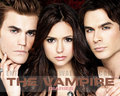 TVD ;) - the-vampire-diaries wallpaper