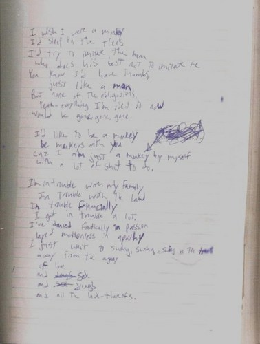 The Monkey Song Lyrics