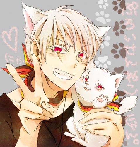 The most awesome cat and country~