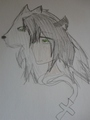 :Nikko: - shewolf11 fan art