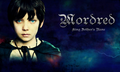(: - asa-butterfield fan art
