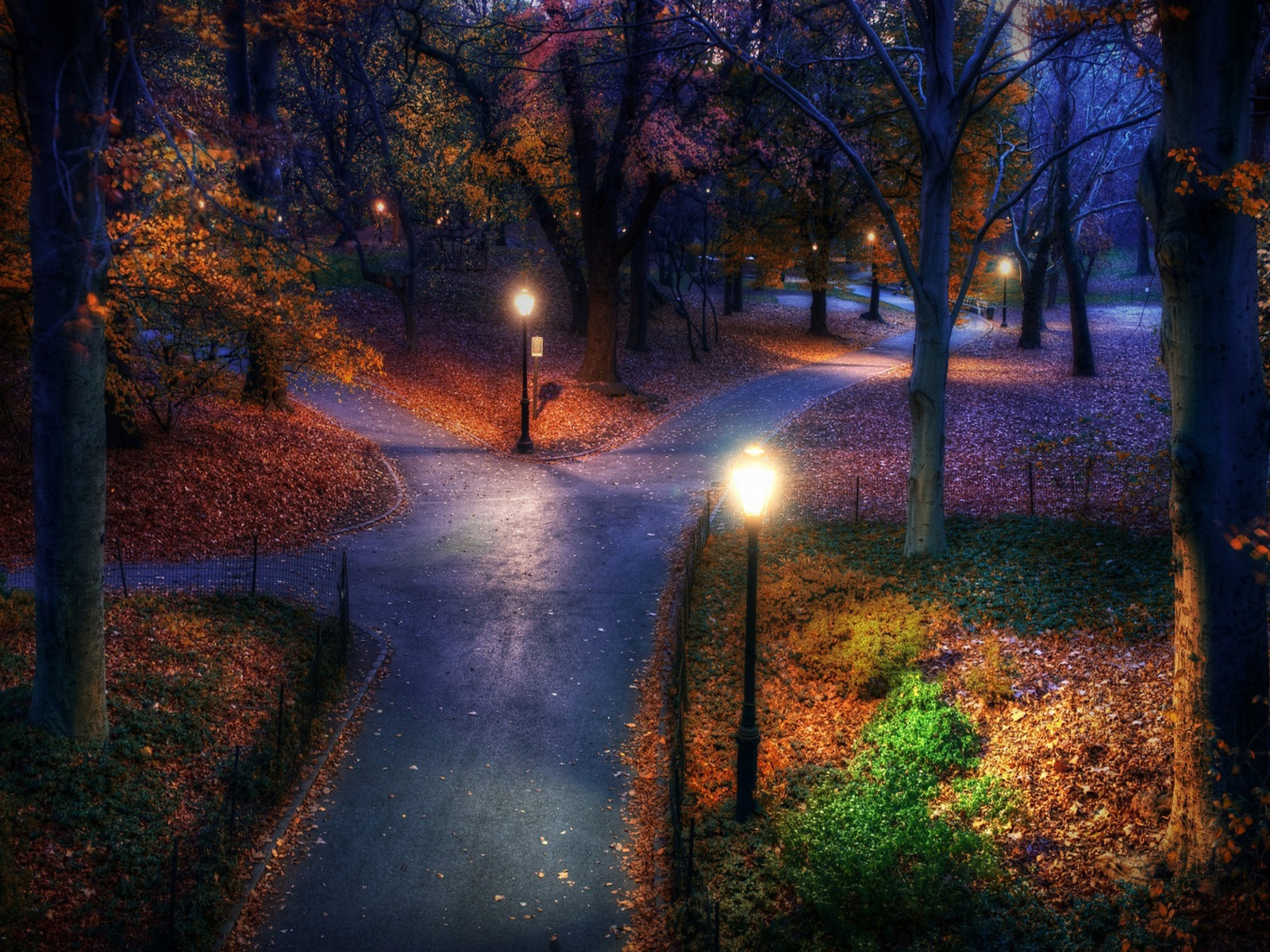 Autumn in the Park - Autumn Wallpaper (25517309) - Fanpop fanclubs