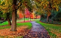 Autumn in the Park - autumn wallpaper