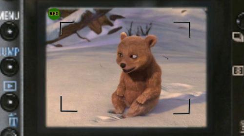 Baby menanggung, bear cubs last smile.