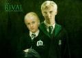Draco ♥