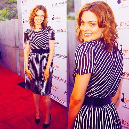 Emily Deschanel wallpaper with a sign titled Emily