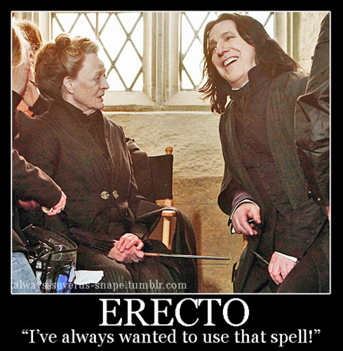 Erecto