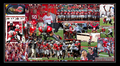 GAME #4  9-24-2011 CU VS. OSU - ohio-state-football photo
