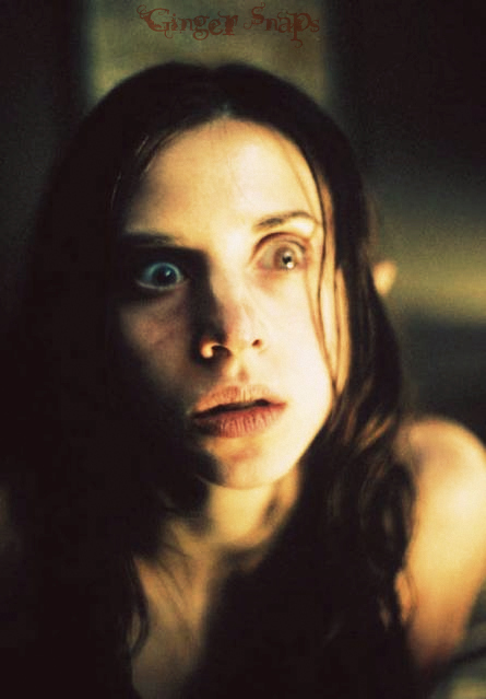 Ginger Snaps images Ginger Snaps wallpaper and background ...