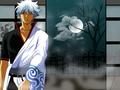 Gintoki - sakata-gintoki wallpaper