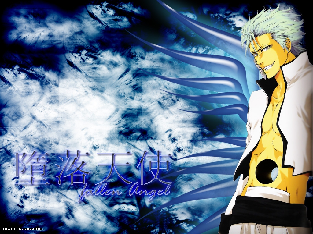Grimmjow grimmjow jeagerjaques wallpaper 25526218 for Photo ecran bleach