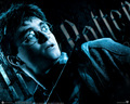 Harry Potter wallpaper