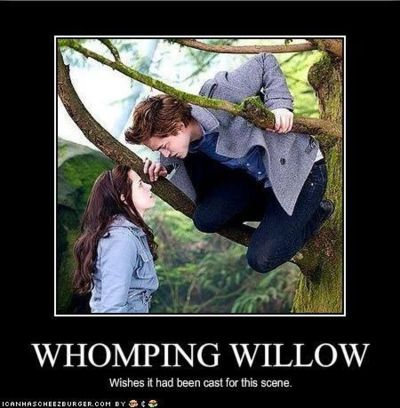 If they had cast the whomping willow