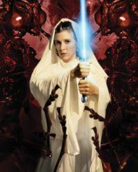 Leia Skywalker Organa Solo Jedi