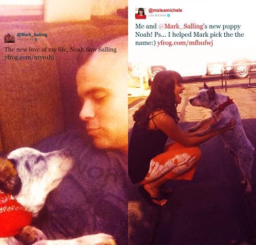 Mark & Lea Tweet - rachel-and-puck Photo