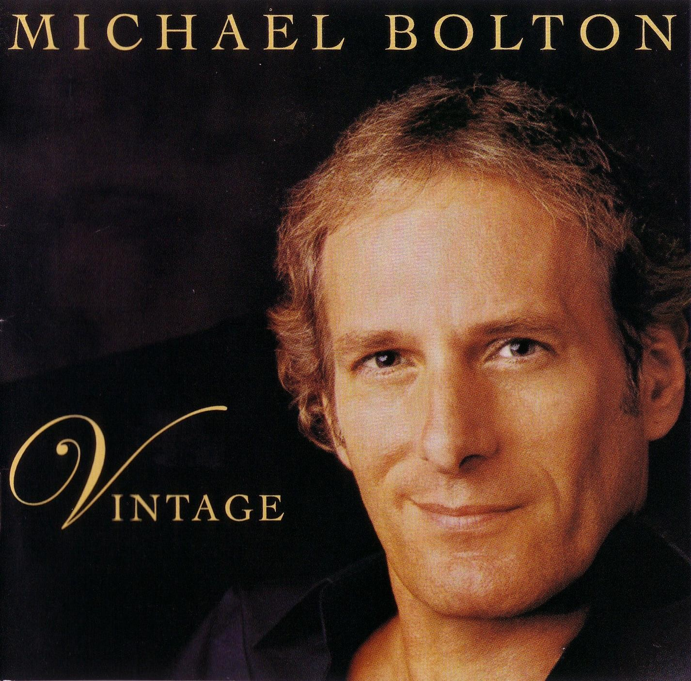 Quotes By Michael Bolton Like Success