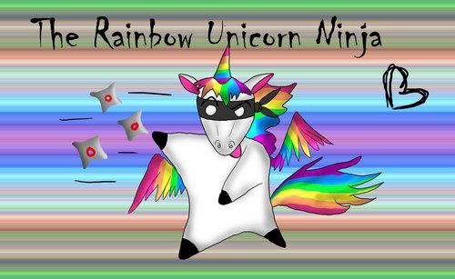 Ninja Unicorn! o_o