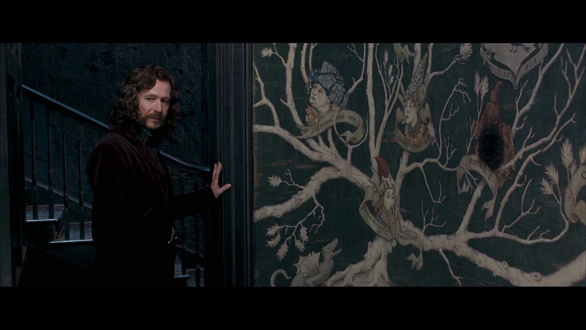 Harry Potter Wall Mural Sirius Black Images Order Of The Phoenix Hd Wallpaper And