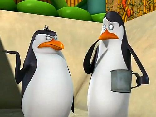 Rico the (Mad) pinguïn :)