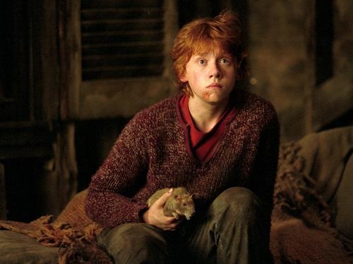Ronald Weasley 바탕화면