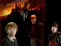 ronald-weasley - Ronald Weasley Wallpaper wallpaper