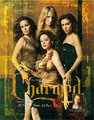 Season 8 Promos - charmed photo