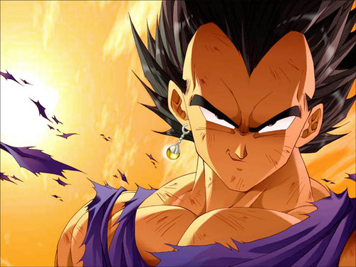 dragon ball z wallpaper entitled Vegeta