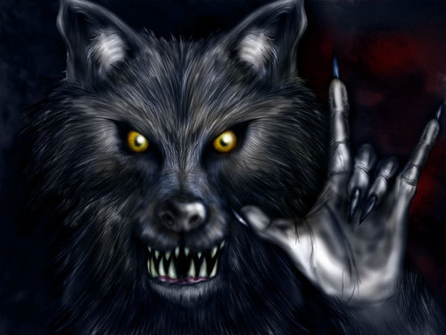 Werewolf - random-role-playing Photo