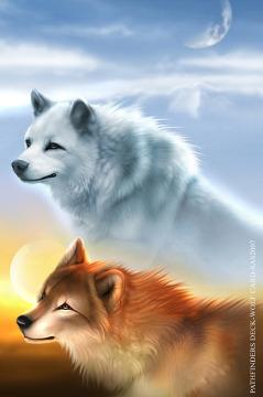 serigala
