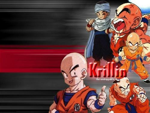 Dragon Ball Z wallpaper probably containing Anime called for my mate Krillin 18