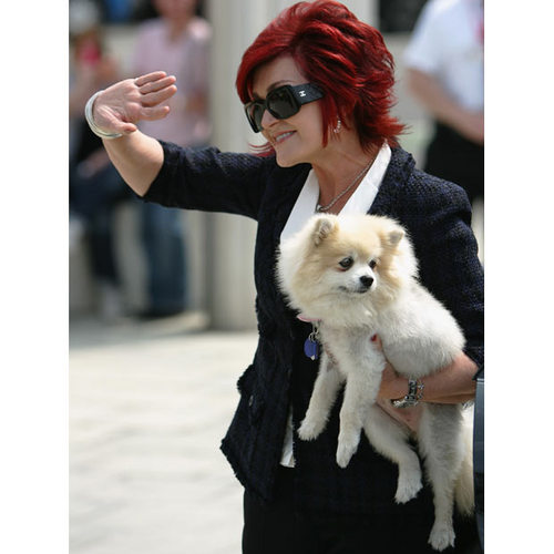 sharon with the puppy