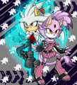 silver y blaze - blaze-the-cat photo