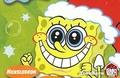 sponge!!!!