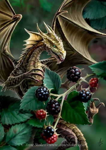 Anne Stokes Hintergrund possibly containing a sumac, a black currant, and a japanese aprikose called brombeere, blackberry Dragon