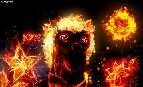 ngọn lửa, chữa cháy kate!!!