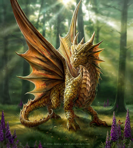 Anne Stokes वॉलपेपर possibly with a triceratops and an octopus called Forest Walk