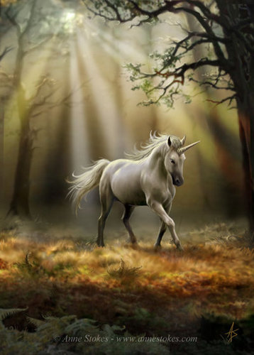Anne Stokes wallpaper probably containing a lippizan titled Glimpse of a Unicorn