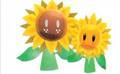 Great Sunflower & Sunflower Kid - super-mario-sunshine photo