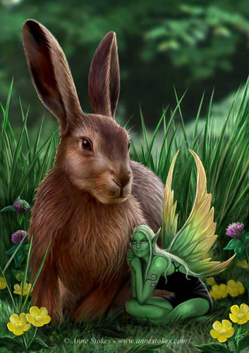 sungura, hare & Sprite