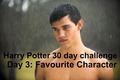 Harry Potter 30 jour Challenge: favori Character