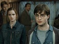 Harry Potter Wallpaper - harry-james-potter wallpaper