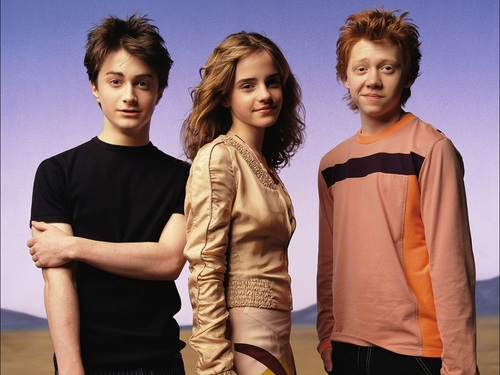Harry, Ron and Hermione achtergrond