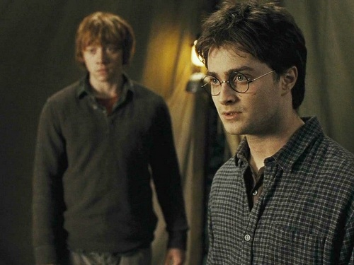 Harry, Ron and Hermione hình nền