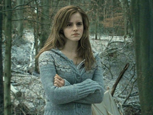 Hermine Granger Hintergrund possibly containing a pullover and a strickjacke called Hermione Granger Hintergrund