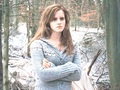 Hermione Granger Wallpaper - hermione-granger wallpaper